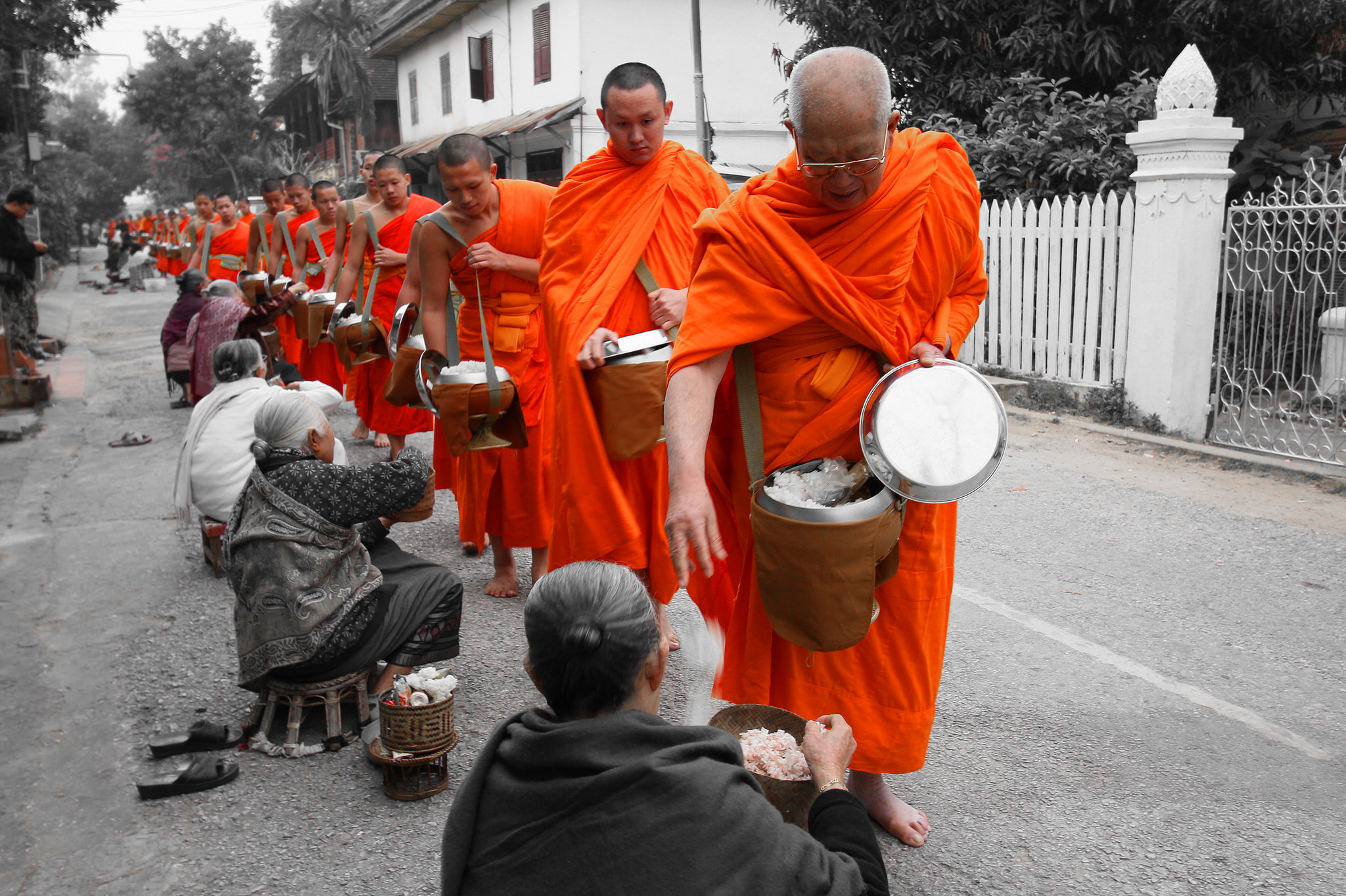 Monks collecting alms in Luang Prabang - Insight To Asia Tours