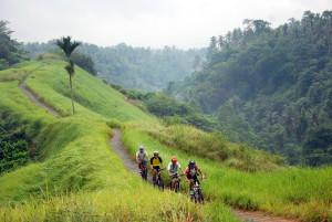 Bali Mountain Bike Adventure