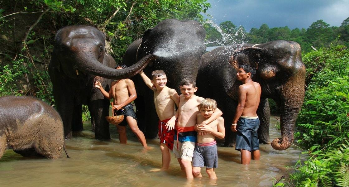 gachorgwa_elephant_c_710AP
