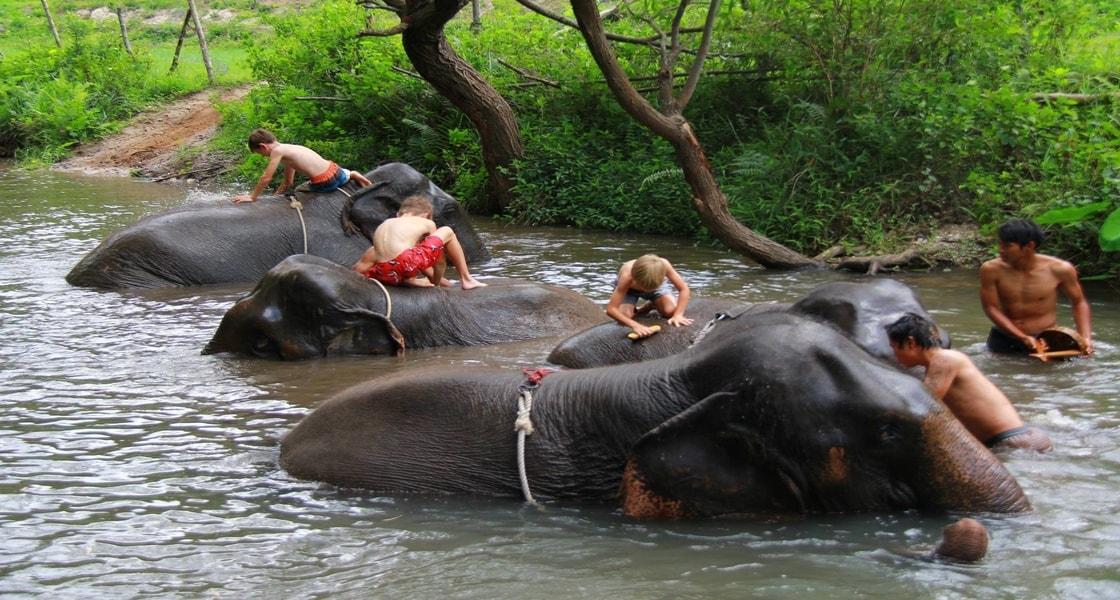gachorgwa_elephant_c_E1HN3