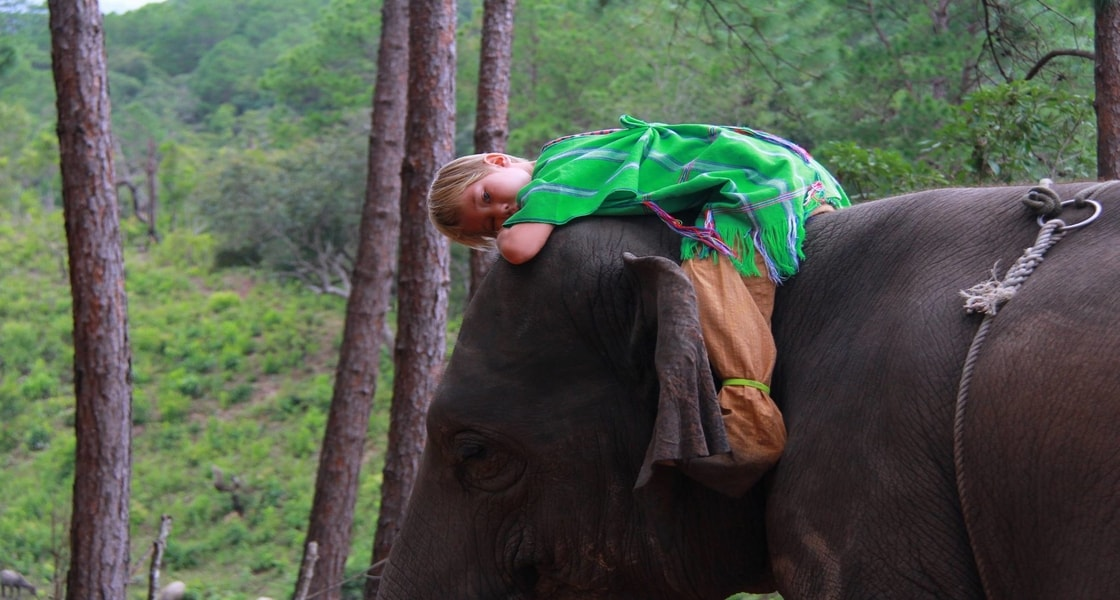 gachorgwa_elephant_c_WE5lE