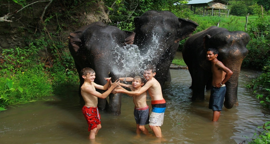 gachorgwa_elephant_c_pZ2Ww