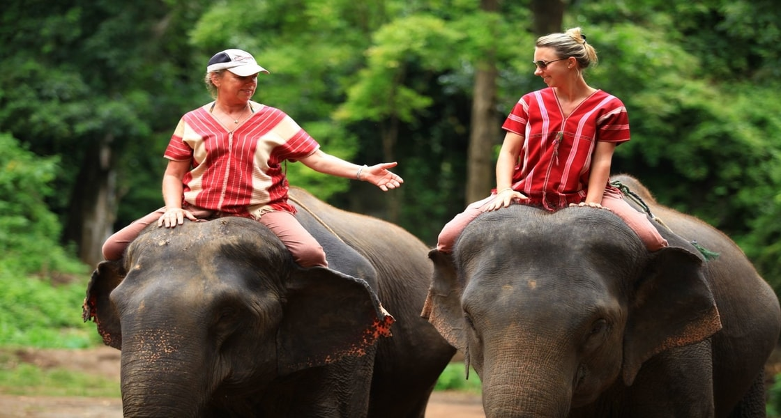 patara_elephant_farm