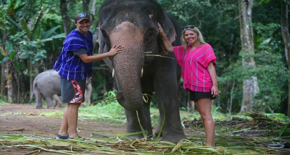 patara_elephant_farm_u3q4E